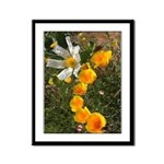 Poppies and White Flower Framed Panel Print