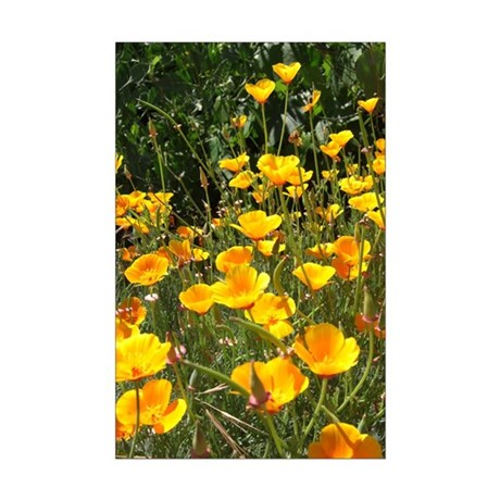 Field of Poppies Mini Poster Print