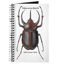 Rhinoceros Beetle Journal