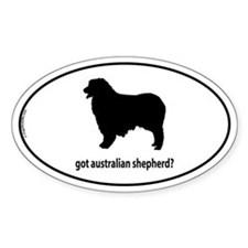 Got Aus Shepherd? Oval Decal