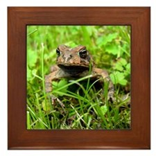 Mr. Toad Framed Tile