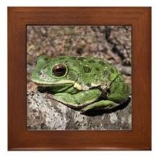Barking treefrog Framed Tile
