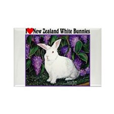 New Zealand White Bunnies Rectangle Magnet (10 pac