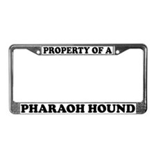 Property Of A Pharaoh Hound License Plate Frame