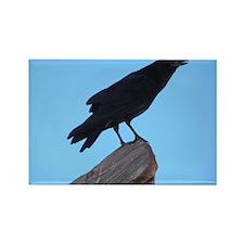 Raven Rectangle Magnet (100 pack)