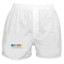 Celebrate Diversity Rainbow Hands Boxer Shorts