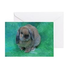 Cute Lop eared rabbit Greeting Card