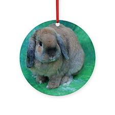 Cute Rabbit Ornament (Round)