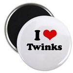 I love twinks Magnet