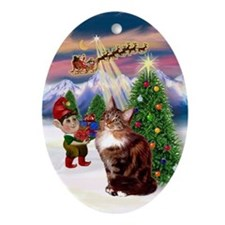 Xmas Tree Maine Coon Cat Oval Ornament