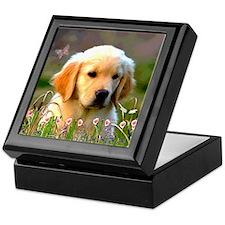 Austin, Retriever Puppy Keepsake Box