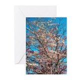 Dogwood tree Greeting Cards (Pk of 10)