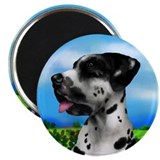 Harlequin Great Dane Dog Magnet