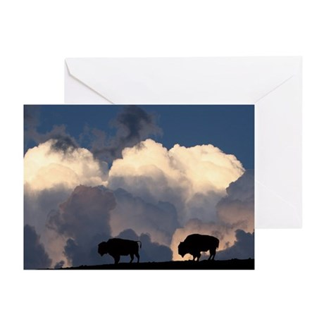 Bison Island Greeting Cards (Pk of 10)