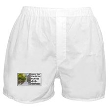 The Wire 'B&B Enterprises' Boxer Shorts