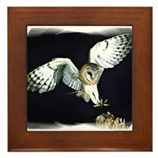 Unique Barn owl Framed Tile