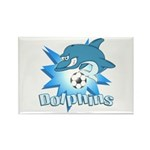 Dolphins Soccer Rectangle Magnet (100 pack)