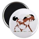 "Bright Bay Overo Horse 2.25"" Magnet (10 pack)"