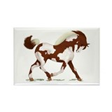 Chestnut Overo Horse Rectangle Magnet