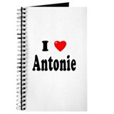 ANTONIE Journal