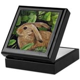 Miniature Bunny Art Jewelry Keepsake Box