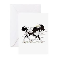 Black Gypsy Horse Anatomy Greeting Card