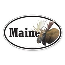 Maine Moose car bumper sticker decal (Oval)