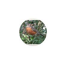 Robin Redbreast Mini Button