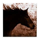 Horse Photography Tile Coaster