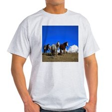 Horses under clear blue sky T-Shirt