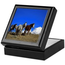 Horses under clear blue sky Keepsake Box