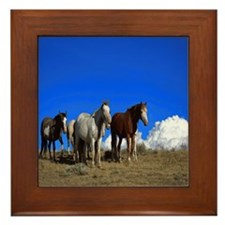 Horses under clear blue sky Framed Tile