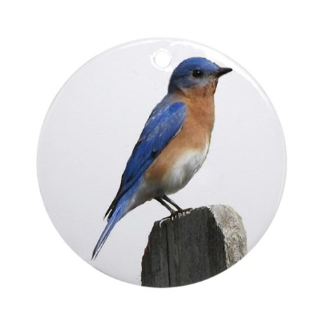 Eastern Bluebird Ornament (Round)