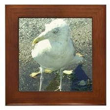 Portsmouth NH Seagull Framed Tile