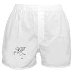 Chasing Pegasus Boxer Shorts
