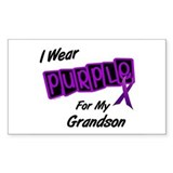 I Wear Purple 8 (Grandson) Rectangle Bumper Stickers