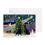 Xmas Magic & Lab PR Greeting Cards (Pk of 10)