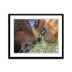 Two Brown Horses Chow Down Framed Panel Print