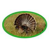 Turkey Fan Oval Decal