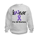 Purple Ribbon Warriors Jumpers