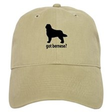 Got Bernese? Baseball Cap