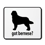 Got Bernese? Mousepad