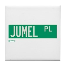 Jumel Place in NY Tile Coaster