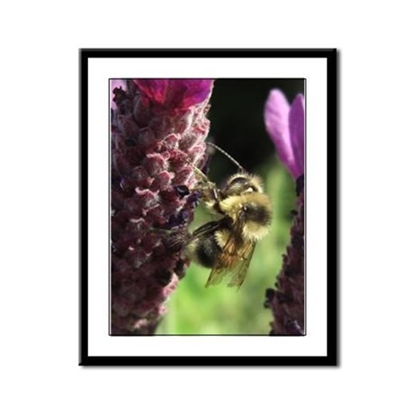 Bumblebee Framed Panel Print