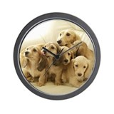 Longhair Dachshunds Wall Clock