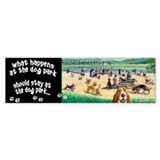 A Day at the Dog Park Bumper Sticker (10 pk)