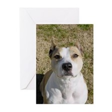 Anna-bully Greeting Cards (Pk of 10)