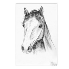 Horse Head Drawing Postcards (Package of 8)