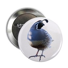 "Evening Quail 2.25"" Button (10 pack)"