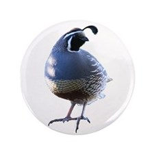 "Evening Quail 3.5"" Button"